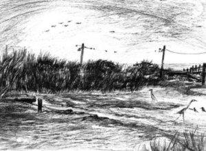 Biloxi Winter, Low Tide