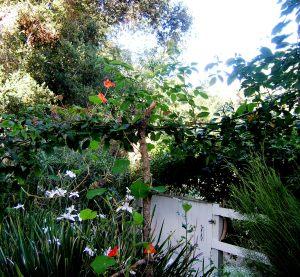 August Garden Gate