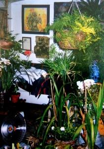 CV, Studio, Holman Ranch Barn, plants