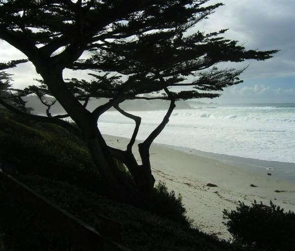 Carmel Beach storm