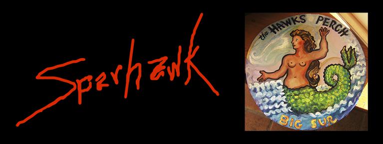 The Hawks Perch